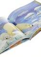 Çiçek Yayıncılık Değerler D.-Kutup Ayısı Ve Dayanışma Renkli